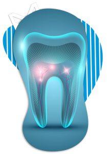Endodontia - Curso de Aperfeiçoamento - FASAM